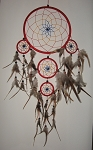 Dream Big Dream Catcher