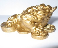 Gold Money Frog on Coins